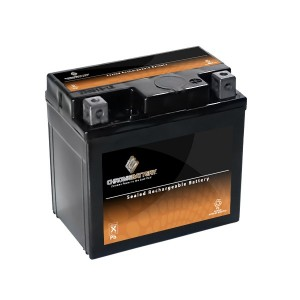 Scooter Battery